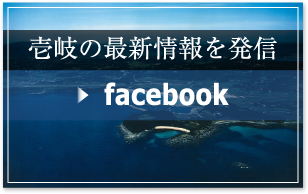 看Facebook